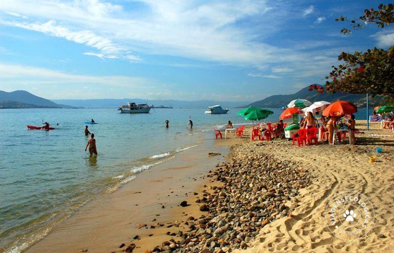 praia_das_pedras_miudas_-_ilhabela