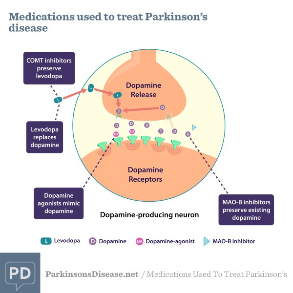 Medications Used To Treat Parkinson's | ParkinsonsDisease.net