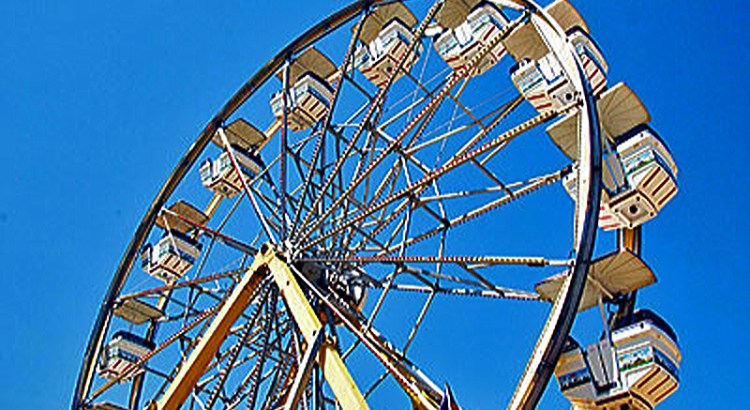 'Parkchella' Brings California's Coachella to Parkland