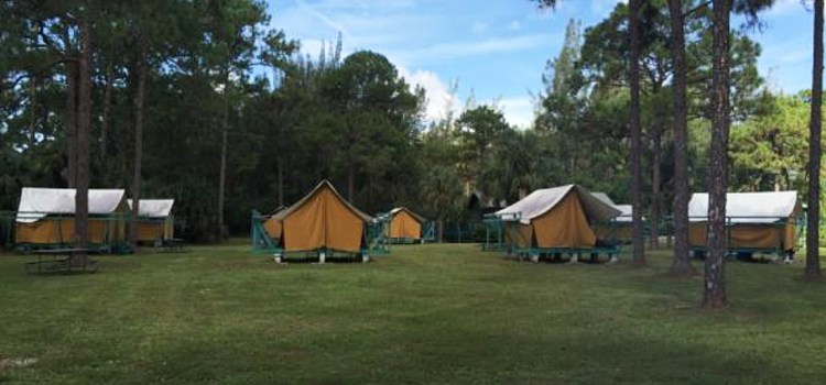 Girls Scouts of Southeast Florida Take Back Camp Telogia in Parkland