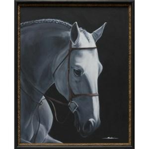 Maximus - the Equine Pride--Sobia Shuaib