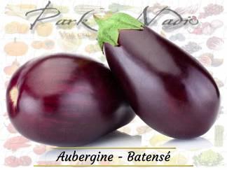 Aubergine Batanse