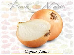 Oignon-Jaune