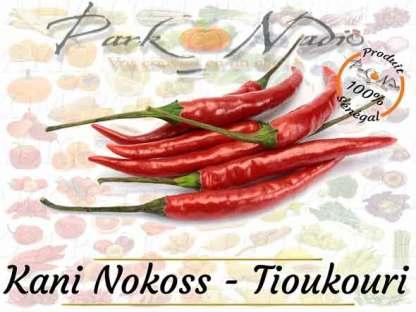Kani Nokoss Kani Bou Sew