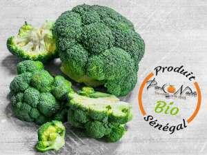 Livraison de brocoli bio à Dakar