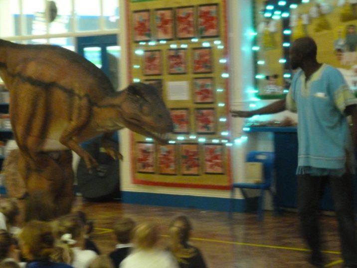 Dinosaur 035
