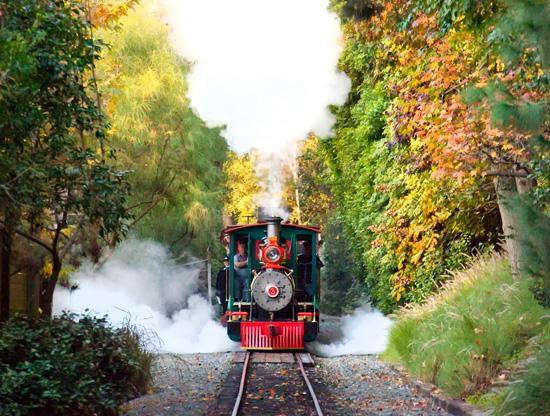 Disneyland Steam Train