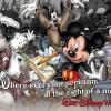 Vintage Walt Disney World: What's Your Ticket?