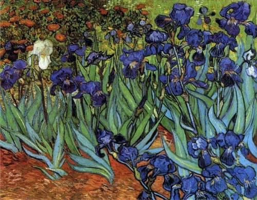 Vincent-Van-Gogh-Irises-1889