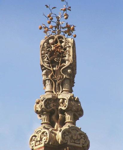 Finca Güell, Antinomy orange tree.