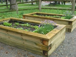 Our two new raised beds for herbs