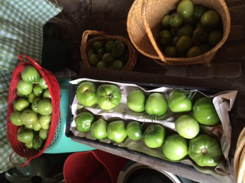 Final green tomatoes picked!
