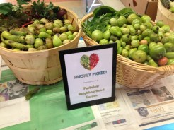 Bountiful Harvest at the Community Share Food Bank