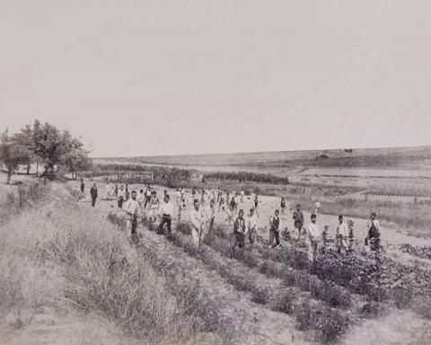 Osmanlı'da Toprak Düzeni