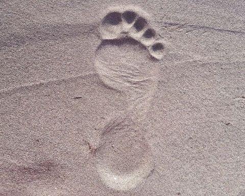ayak izi