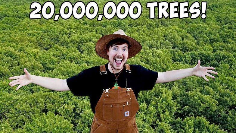 20 milyon ağaç