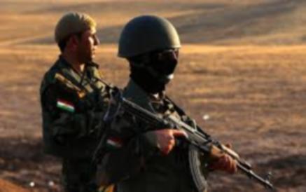 Armi italiane in Iraq. Le ragioni del no nella risoluzione M5S
