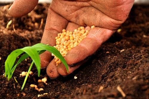 Agricoltura, da Governo sistema farsa su controlli biologico