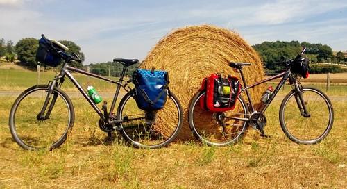 Trasporti, in Olanda per studiare mobilità sostenibile