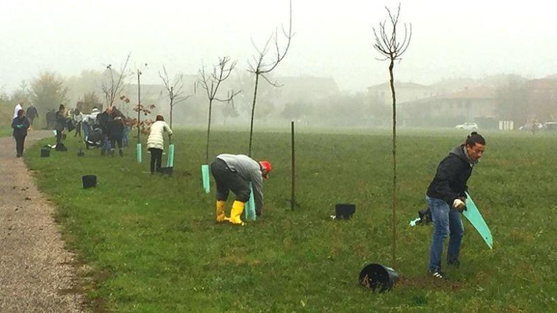 """Ambiente: Inquinamento primo nemico dei bambini. Con noi piantati 40.000 alberi """"Salva Salute"""""""