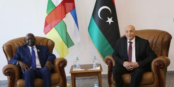 فخامة رئيس مجلس النواب يستقبل رئيس برلمان افريقيا الوسطى والوفد المرافق له