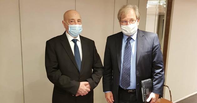 فخامة رئيس مجلس النواب يلتقي سفير الولايات المتحدة الأمريكية لدى ليبيا بالقاهرة