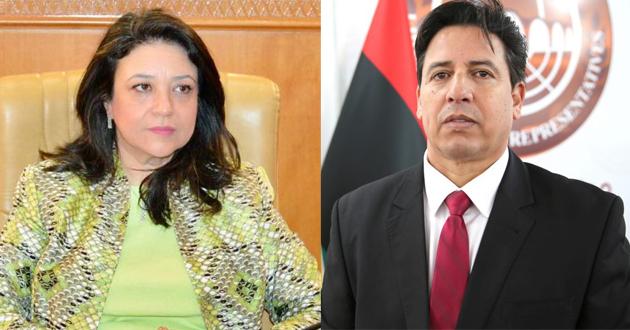 رئيس لجنة الخارجية يتلقى تهنئة من رئيس لجنة الخارجية بالبرلمان التونسي