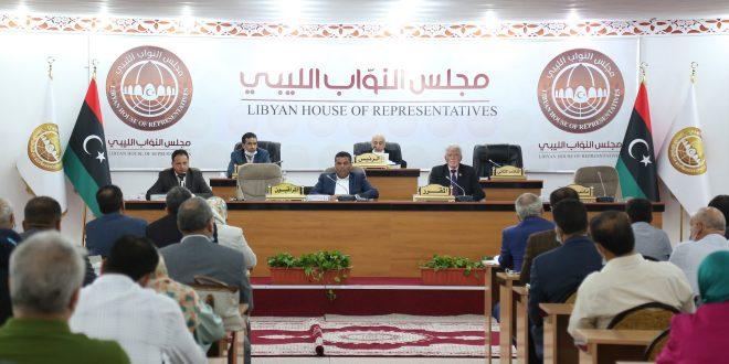 لجنة الشؤون الخارجية تعرب عن تضامنها مع الجزائر الشقيق في مواجهة أزمة الحرائق