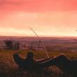 Être solitaire pour ( beaucoup ) mieux réussir