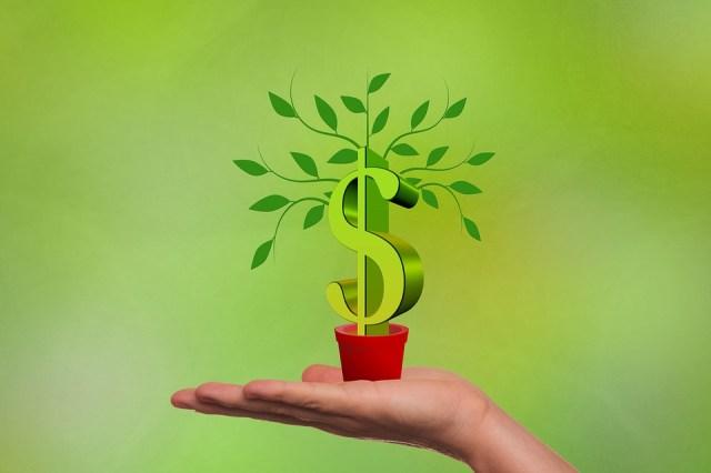 dividende-dividendes-rendement-argent-gagner-vaincre-investir-investissement