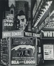 white zombie displays