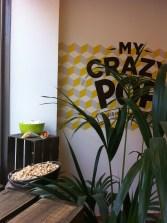 My crazy pop (8)
