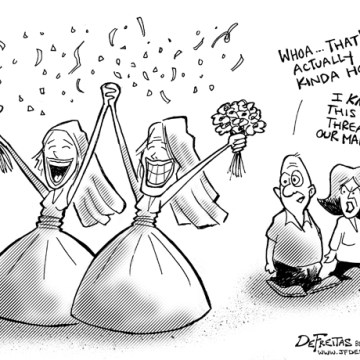 gay marriage cartoon
