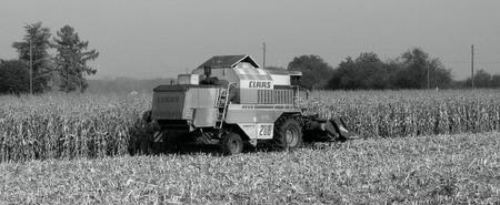 Farming11
