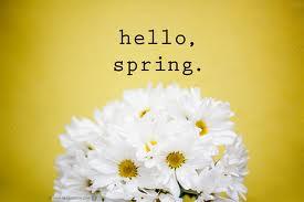 hello spring 6