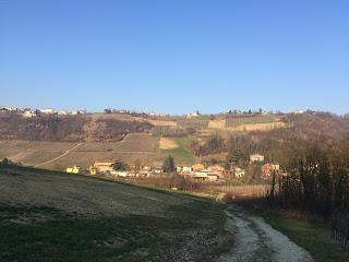 Scopriamo la mornasca nei vini di Cascina Gnocco. #calicinviaggio