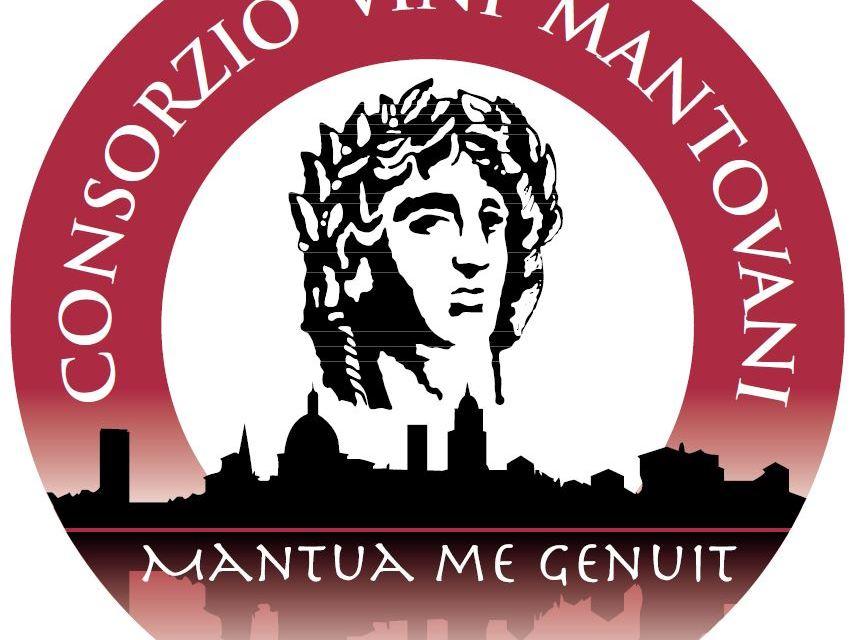 Alla scoperta dei vini mantovani