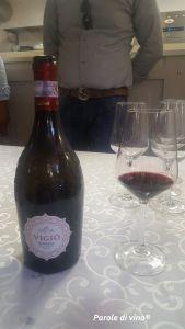 Vigio