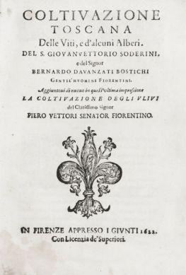 Trattato di Soderini