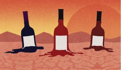 Quattro cose sui cambiamenti del clima e il vino