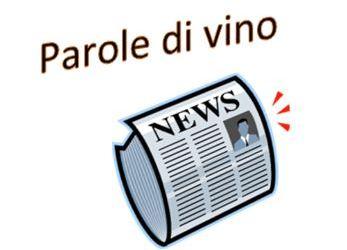 Parole di vino News