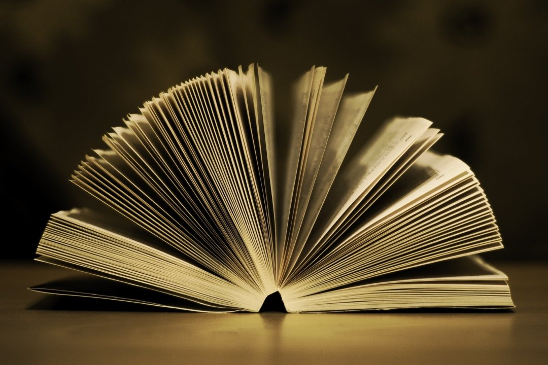 #CurriculumDelLibro, Piccole Donne (immagine via Pixabay)