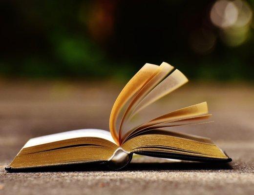 Recensione: leggere Verso le luci del Nord di Alessia Savi