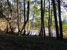 Margem do rio na área da Capunga. Maio de 2016