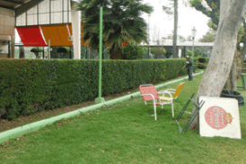 Trabajos de jardineria 2016
