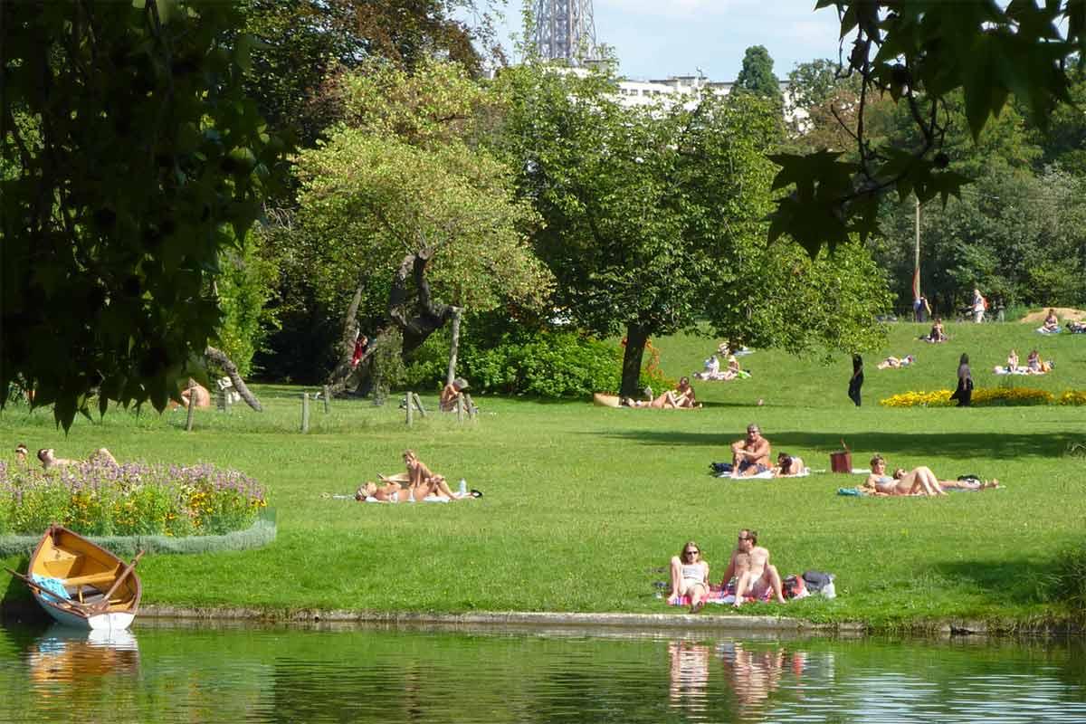 Bois Parque Ibirapuera Conserva 231 227 O
