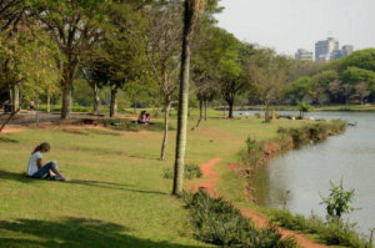À beira do lago no Parque do Ibirapuera. Foto: Rodrigo Soldon.