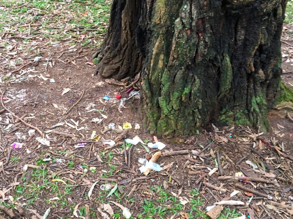 Imagem de camisinhas jogadas no chão do parque (crédito: Michel Friedhofer)