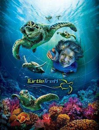 SeaWorld Orlando's Turtle Trek 2012
