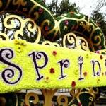 Un festival de flores, música y colores